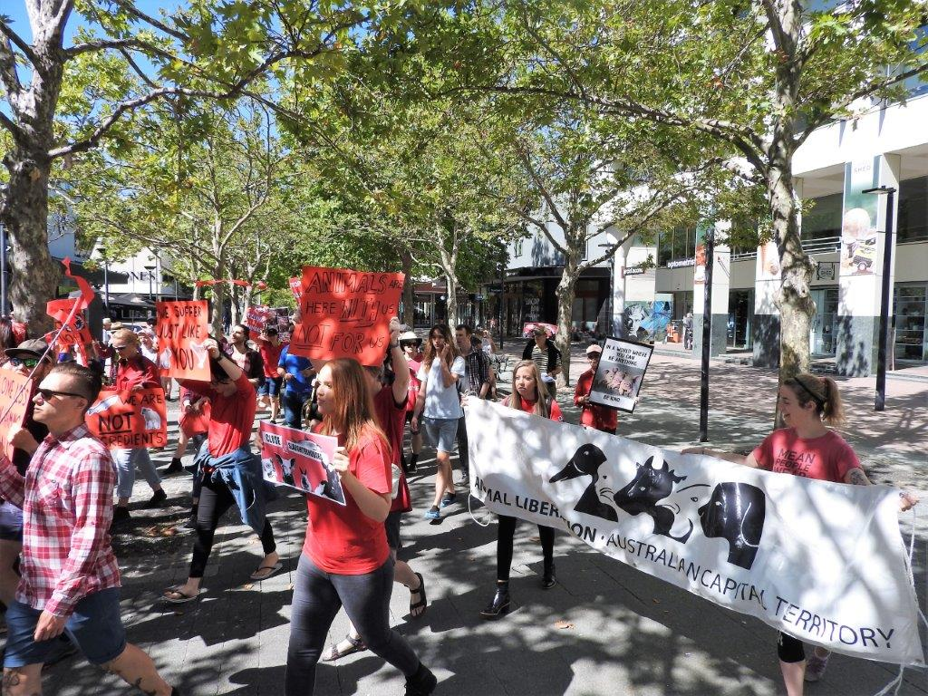 March to end slaughterhouses 2017