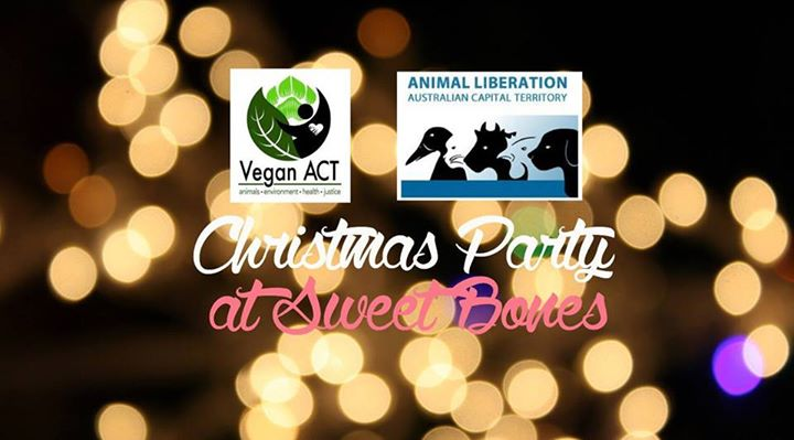 Xmas dinner Vegan ACT and ALACT 2015